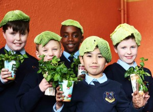 Primary School Pupils Put On Their 'Veg-heads' For Sow & Grow