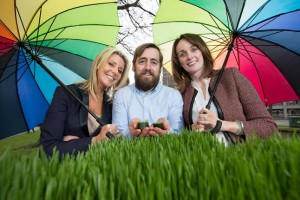 Show Your Business at Taste of Dublin – for FREE!