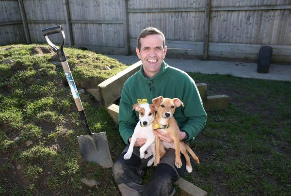 Ireland's first Dog Friendly garden is launched at Bloom by Bord Bia today