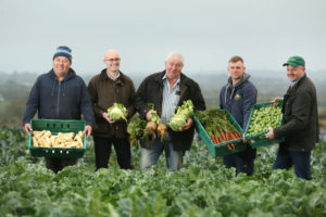 IFA Launch Christmas Food Producers' Campaign & Warn Retailers Against Discounting Of Fresh Produce